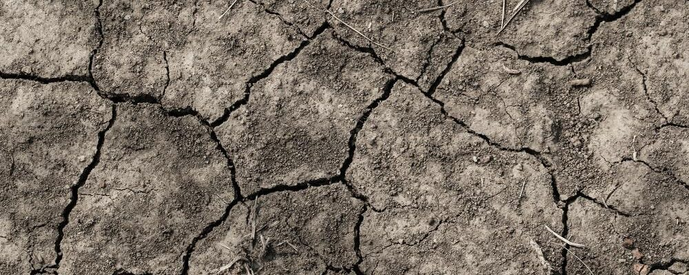 Climate Change in Tanzania 4 Frightening Facts About The_Future