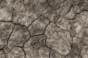closeup of dried soil